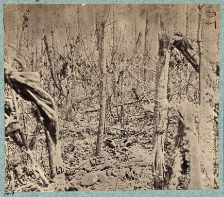 View in the woods on the north side of the Orange Plank Road, taken sometime 1864-65 after the Battle of the Wilderness by G. O. Brown. Library of Congress.
