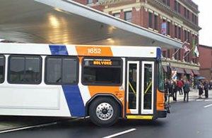 holyoke_bus