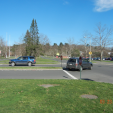 Commonwealth Avenue today, from the median between lanes